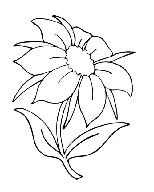 Flower Coloring Pages Free For Kids Gtgt Disney Coloring Pages