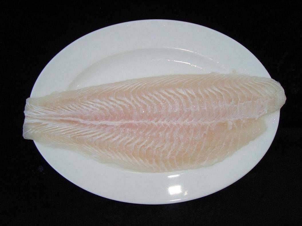 for What is pangasius fish