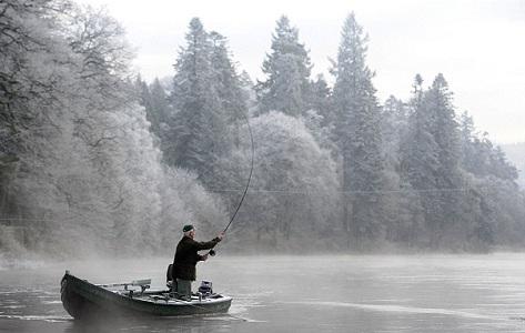 Hướng dẫn quăng mồi câu cá chính xác bằng cần câu máy
