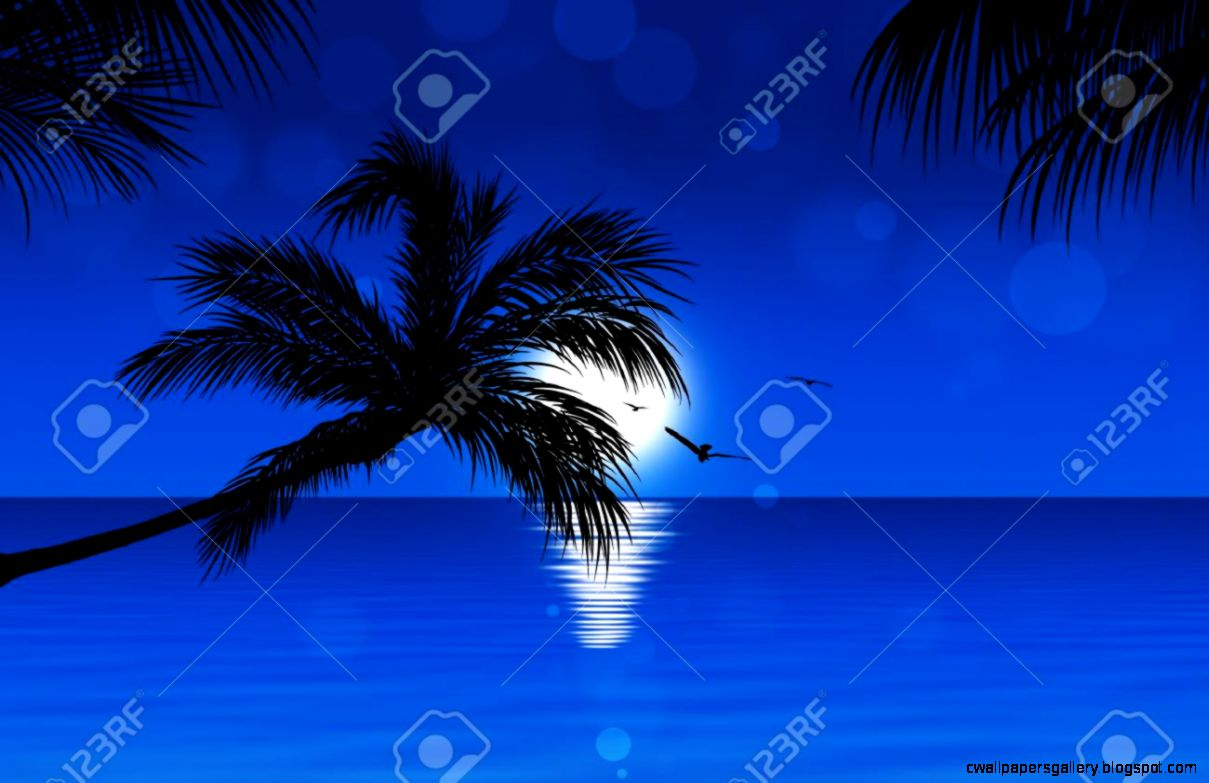 Blue Tropical Sunset Background With Palm Trees Birds And Sunny