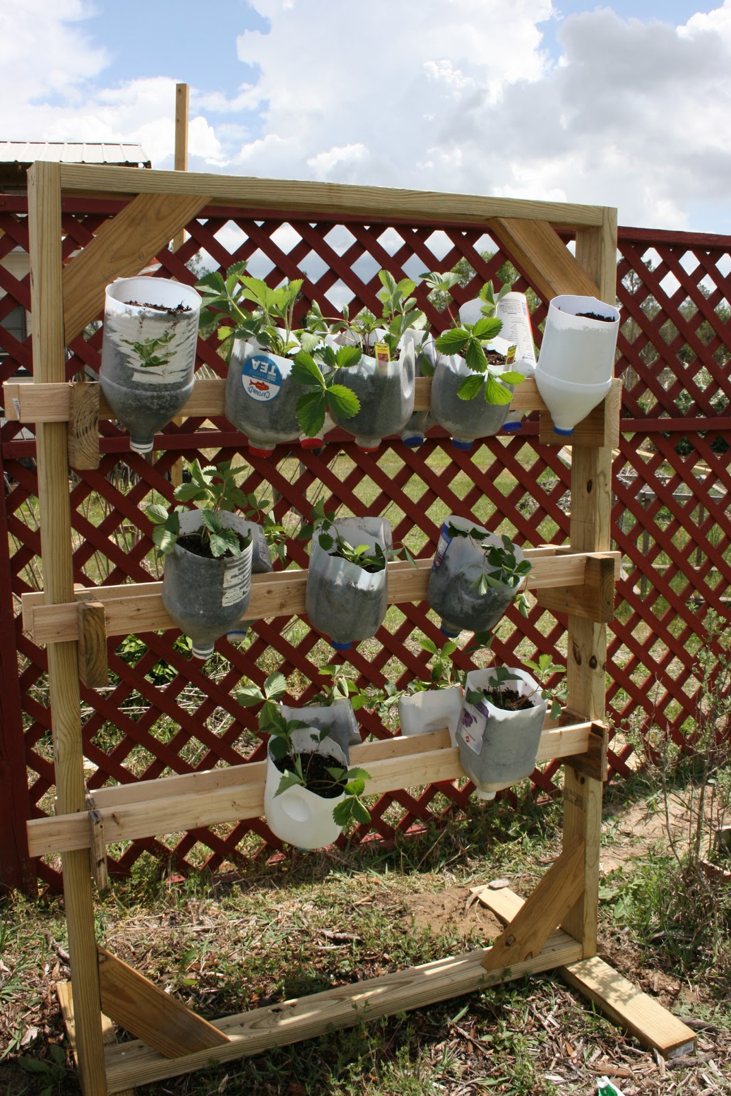 Vertical Strawberry Planter. Pallet With Vertical Strawberry Planter ...