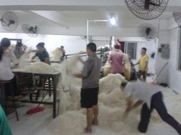 Chinese Workers Caught Stepping And Sleeping On Noodles That Will Eventually Be Sold
