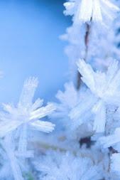 на улице зима, у нас тепло!