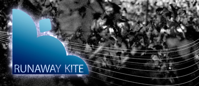 Runaway Kite