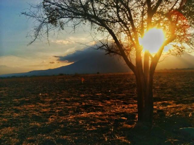 foto indahnya sunrise di savana bekol