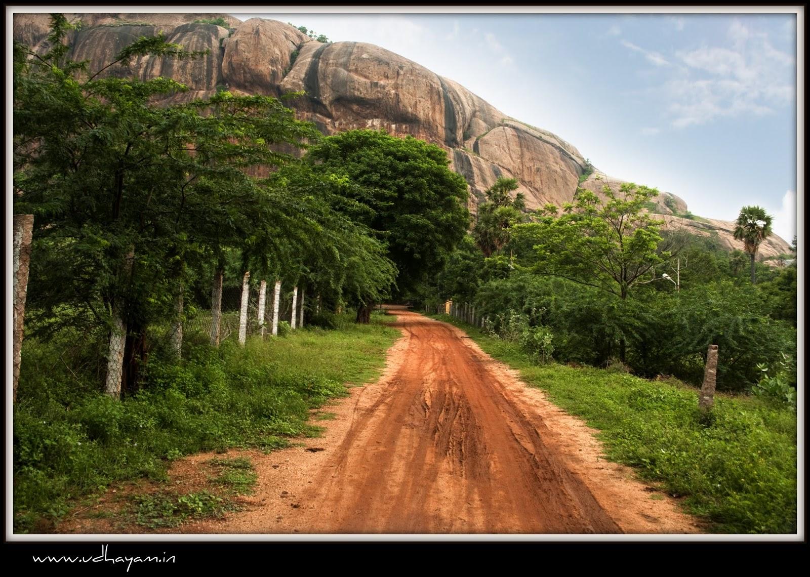 Thiruparankundram Cave