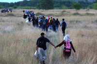 http://www.bostonglobe.com/news/bigpicture/2015/09/03/migrant-crisis-europe/8fjNUeJ5Lvbnqg31nnMSbO/story.html?p1=BP_SeePhotos