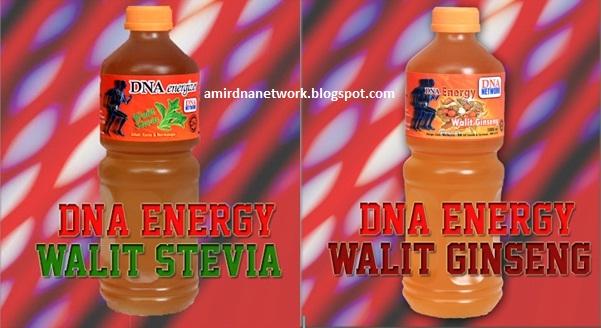 DNA NETWORK