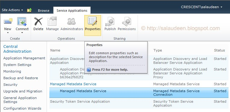 Manage Service Applications application Properties