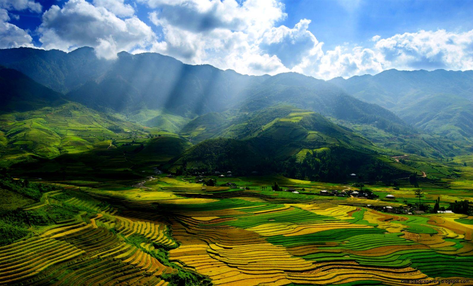 Vietnam Yen Bai Province beautiful scenery valley fields