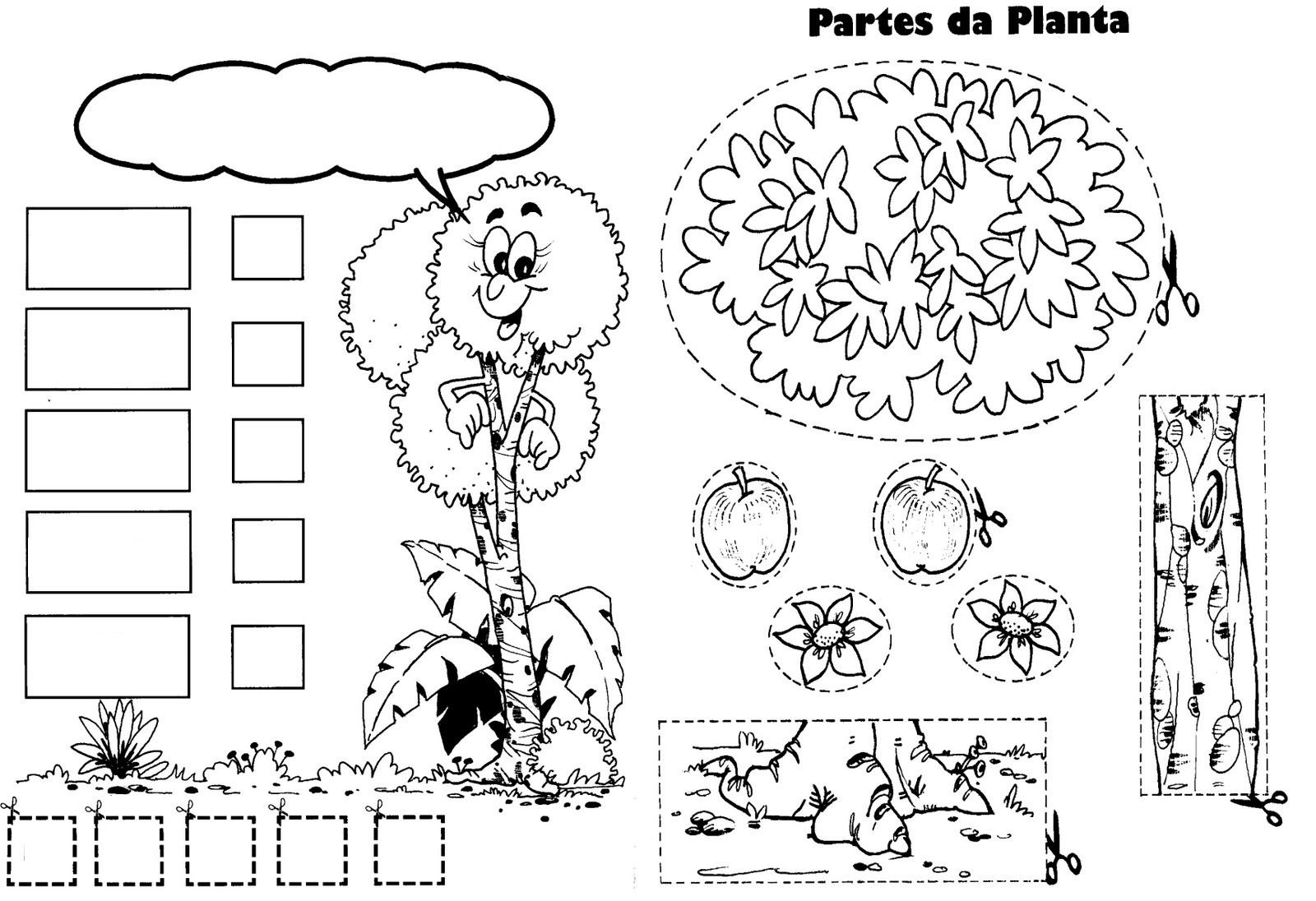 COLOREA TUS DIBUJOS: Dibujo de una planta para completar sus parte