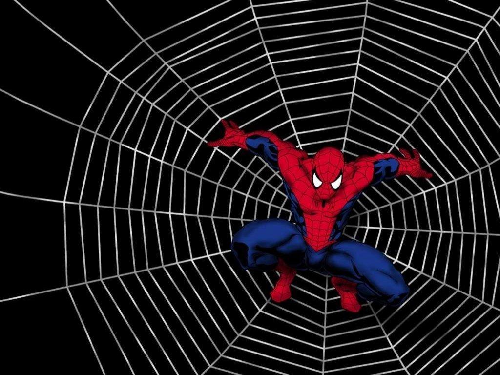 http://3.bp.blogspot.com/-UUnakGr2xFI/TsvrvKHXLRI/AAAAAAAAAY0/BBUUGwQZUbg/s1600/toile+araign%25C3%25A9e_spider-man-movie-wallpaper.jpg