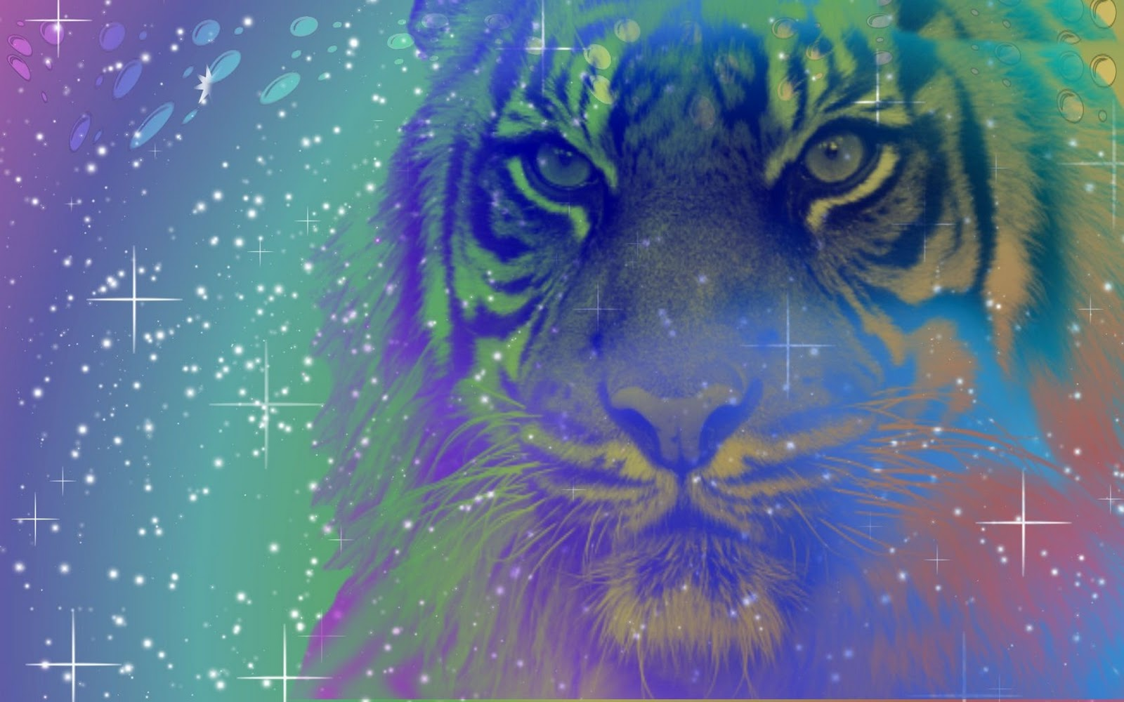 Colorful Tigers
