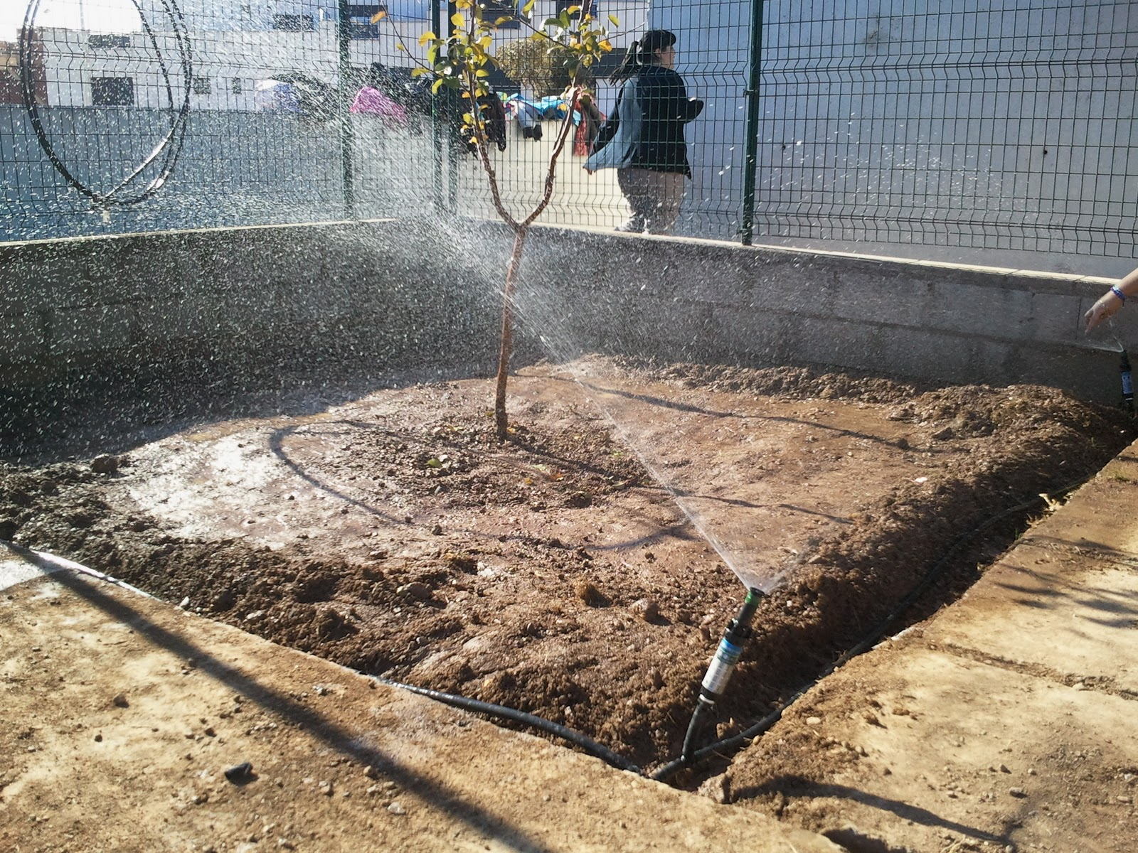 Els jardiners de l 39 alcalat n instalaci n de riego por for Instalacion riego jardin