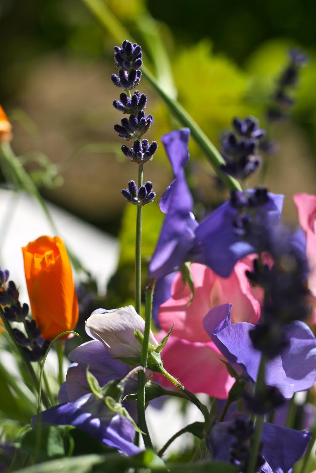 The Polished Pebble: Favorite Gardening Books