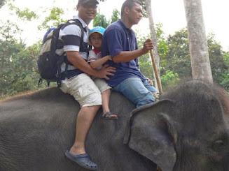 Naik Gajah, Kuala Gandah
