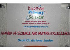 Award of Excellence in Science and Maths 2013