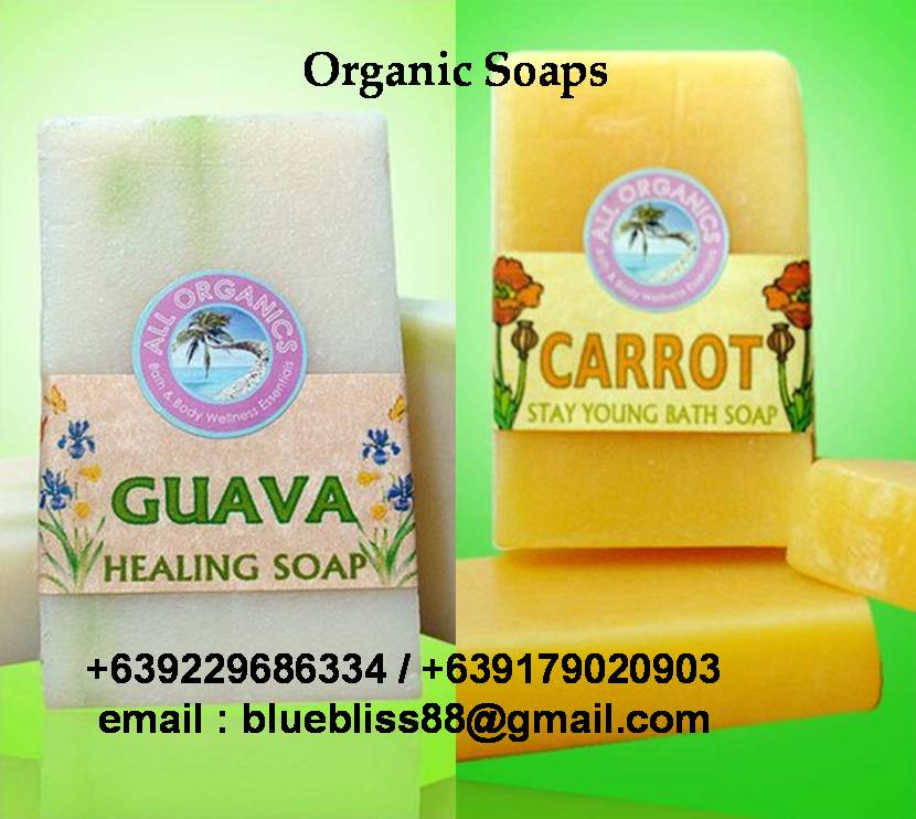 guava soap for investigatory project Since it is a homemade soap, is it possible that an individual can create soap just like this easily and safely our investigatory project focused in different benefits that can heal skin problems due to daily exposure to pollution, dust and other agents that can contribute to similar skin problems.