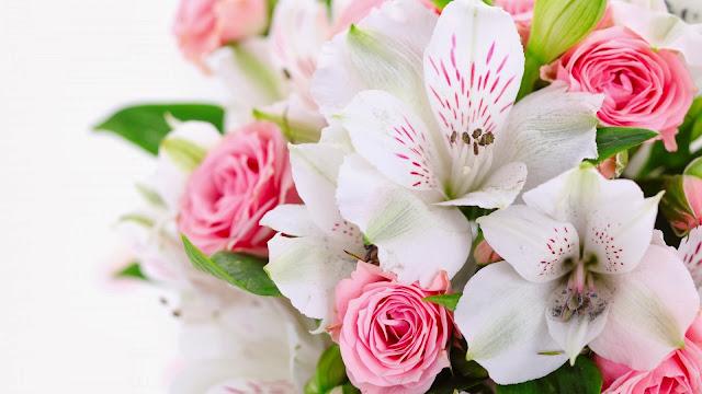 Orquídeas Blancas y Rosas Rosadas
