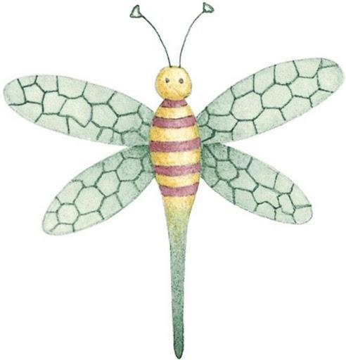 Libelula Para Imprimir Dibujos De Insectos Para Imprimir Gusano Para