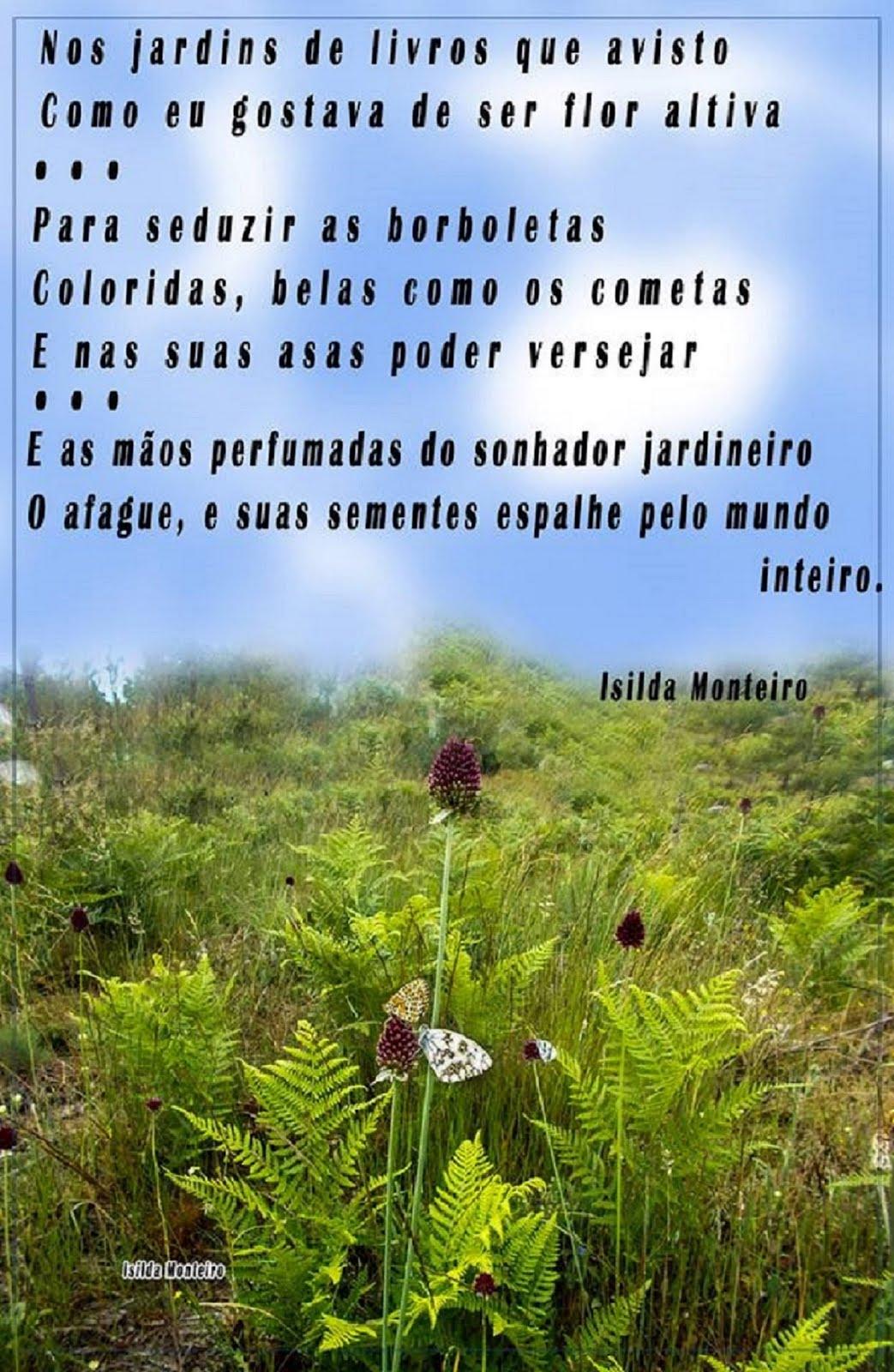 © ISILDA  MONTEIRO