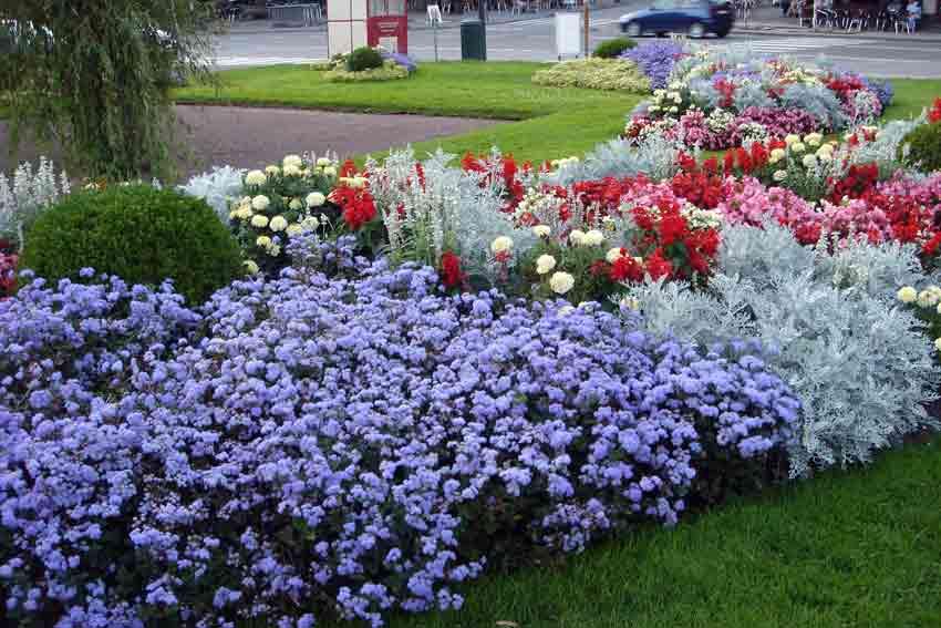 faire un parterre de fleurs projets rcup pour le jardin with faire un parterre de fleurs. Black Bedroom Furniture Sets. Home Design Ideas
