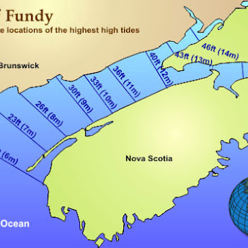 Worksheet. LOAFin AROUND and KANOE TRIPPING  Hiking The Bay of Fundy
