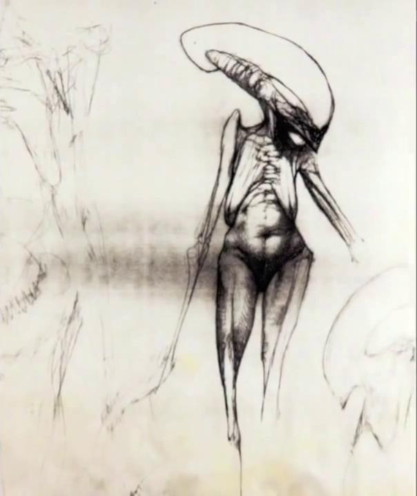 Alien Explorations: Chris Cunningham / Halls' Newborn Alien concepts