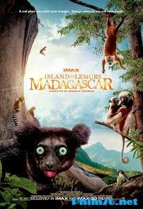 Hòn Đảo Của Vượn Cáo Ở Madagascar - Island Of Lemurs: Madagascar