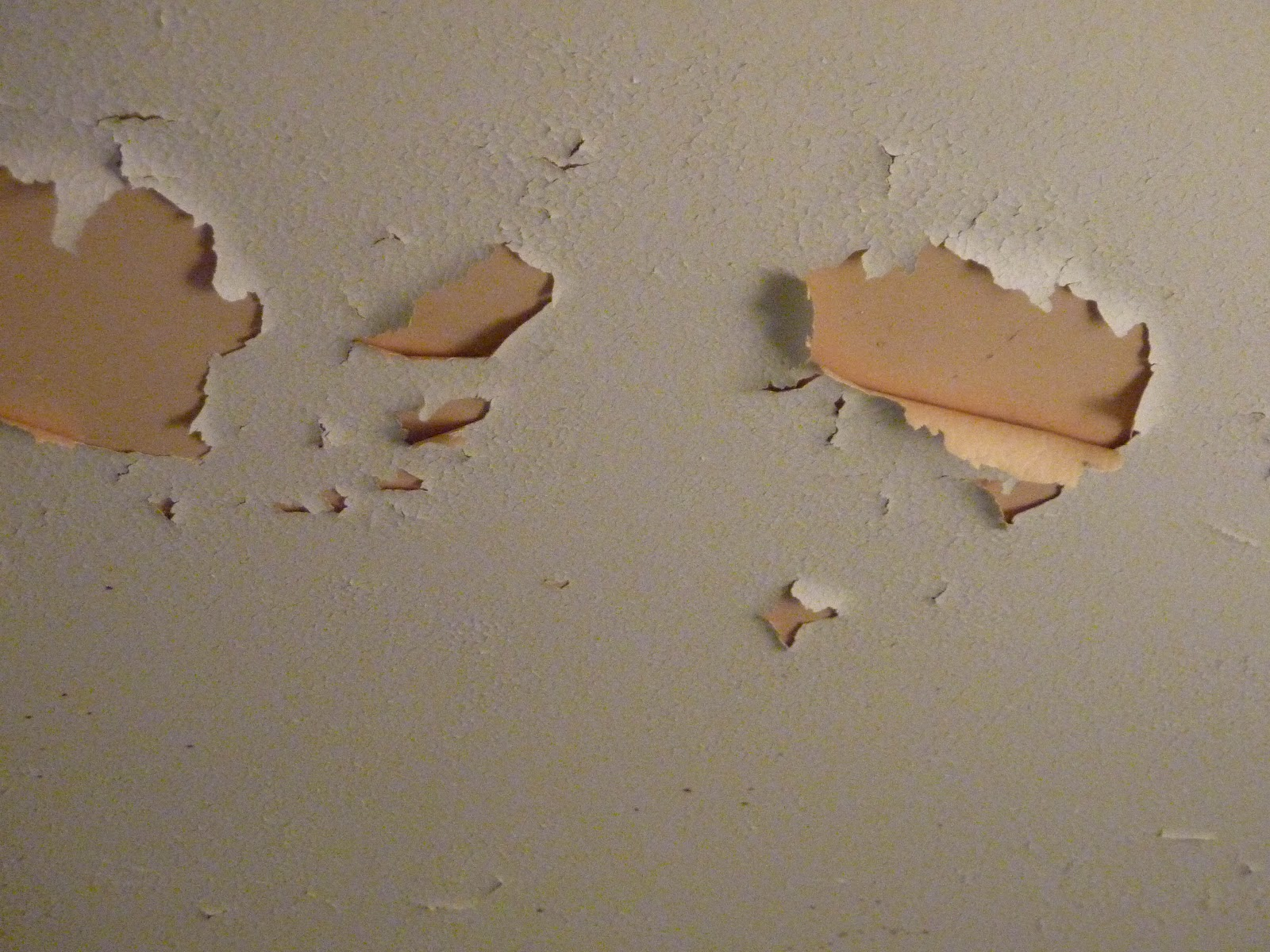 How To Fix Bathroom Ceiling Paint Peeling Creating