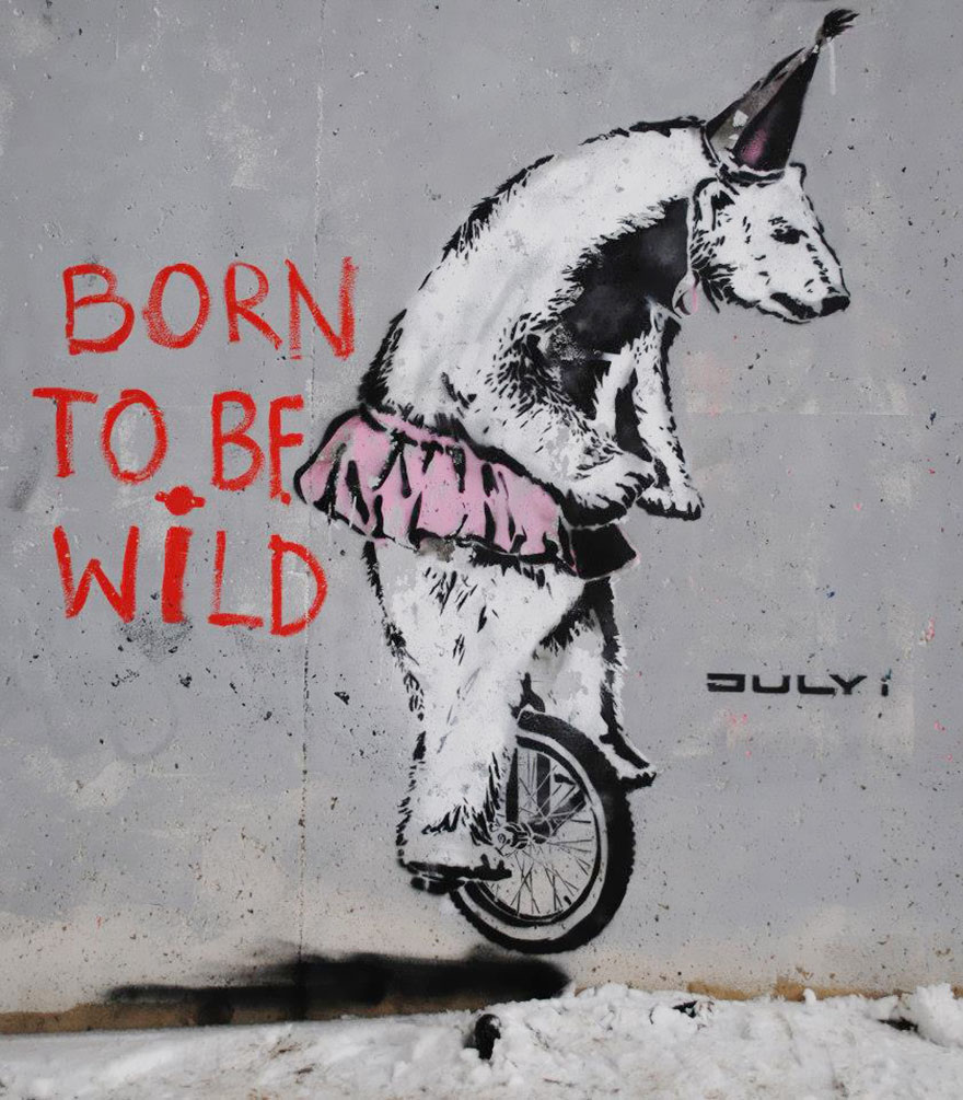 These 30+ Street Art Images Testify Uncomfortable Truths - Born To Be Wild, In The Wild