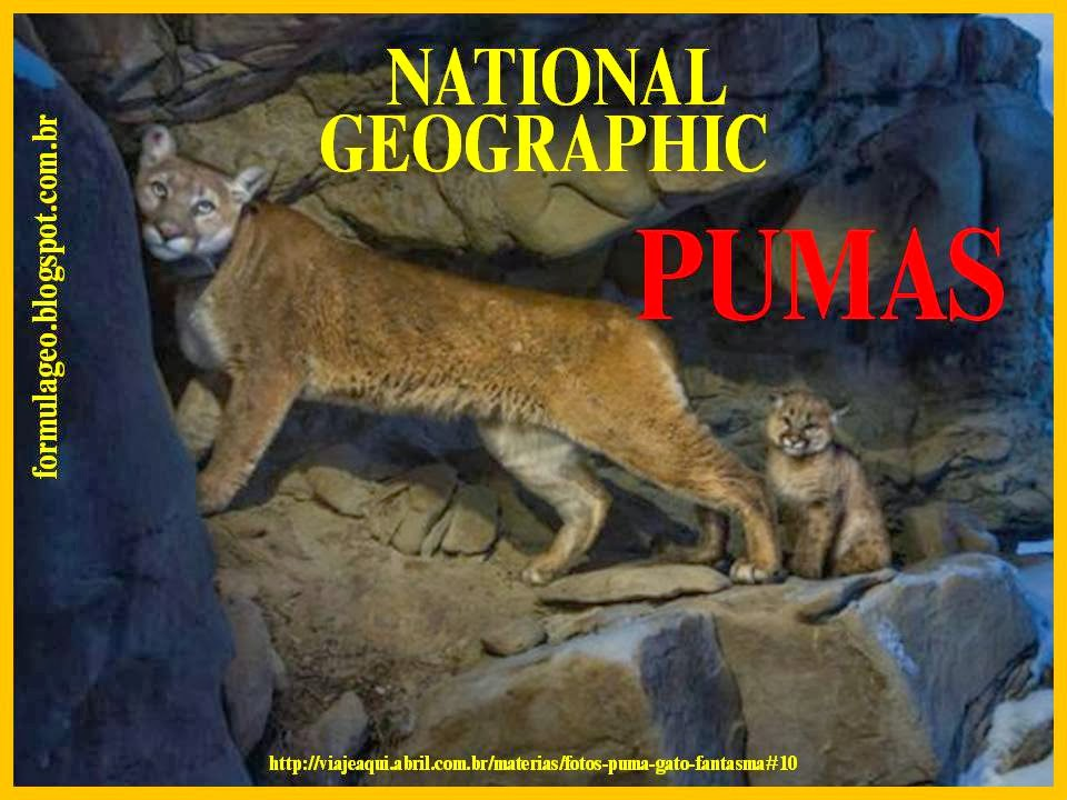 https://sites.google.com/site/magnun0006/Pumas.pptx?attredirects=0&d=1