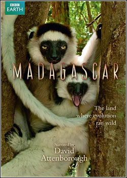 Download Animal Planet: Madagascar   Ilha de Belas Riquezas   Dublado