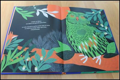 Coeur de hibou - Isabelle Wlodarczyk & Anne-Lise Boutin