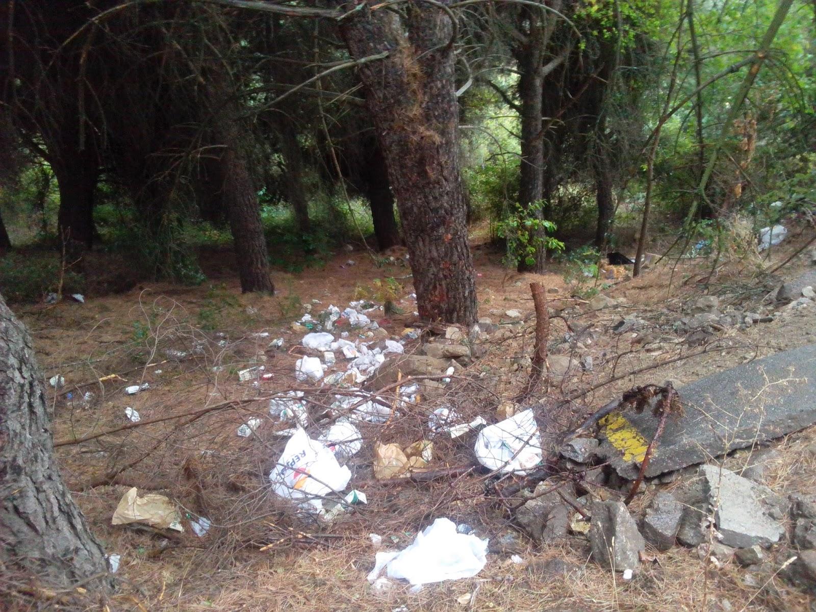 basuras en la zona de los pinos