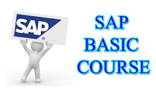 SAP basic course for beginners and users (SAP PRESS)