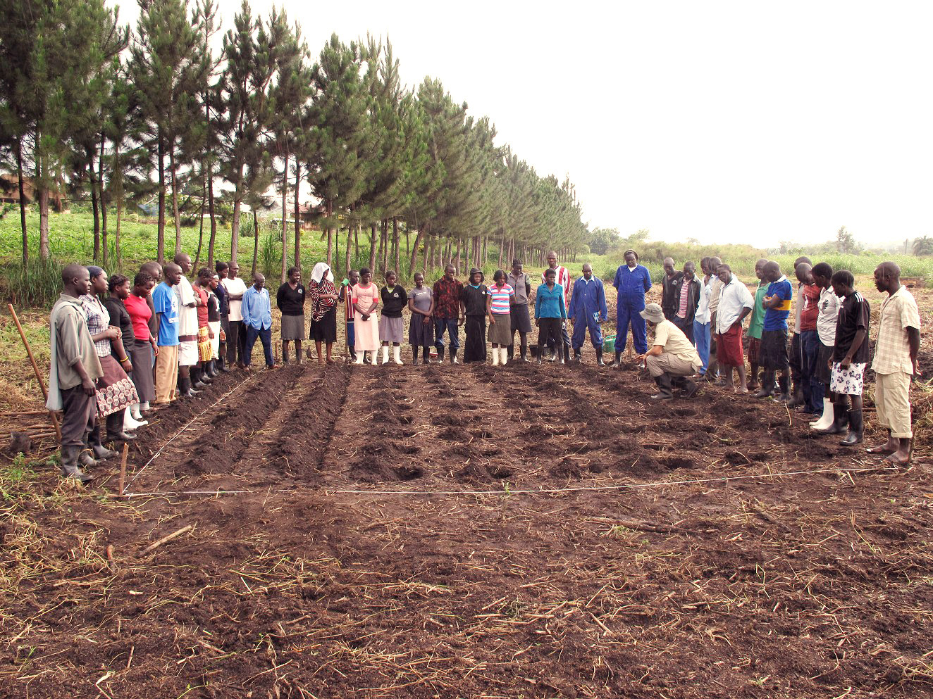 effect of agriculture on our environment Agriculture affects the environment by the kind of soil used, wildlife habitats and the air we breathe in it also effect by the amount of water used in the soil  8 people found this useful.