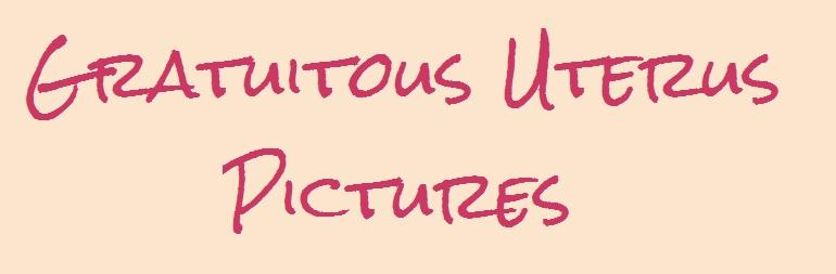 Gratuitous Uterus Pictures