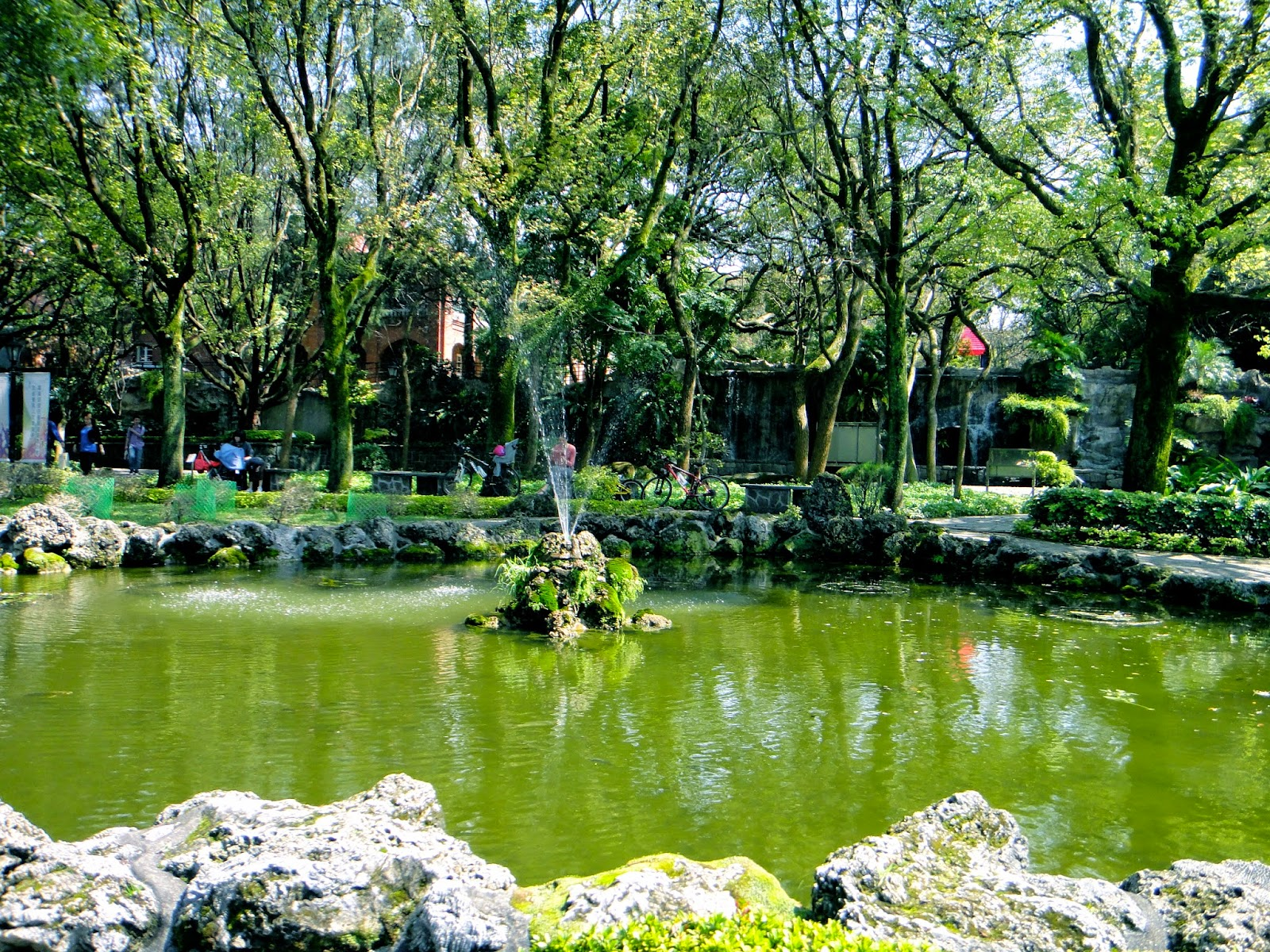 Pond in Aletheia University Yard Tamsui