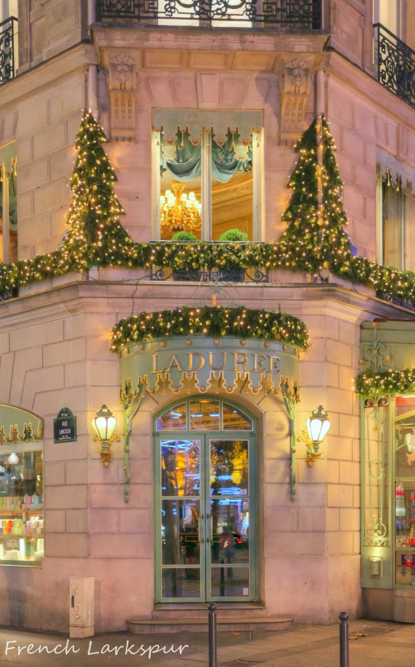 French larkspur back from paris and our advent calendar for Laduree christmas