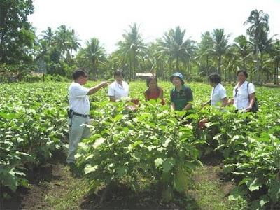 agriculturists