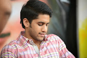 Naga Chaitanya photos-thumbnail-1