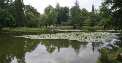 Riposo in Ucraina - la natura