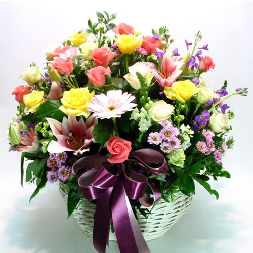 Hình ảnh hoa 20-11 tặng thầy cô