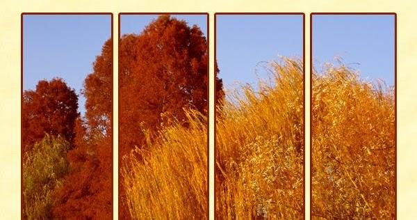 Citaten Over Herfst : Seiza ro gedachten gedichten weerspreuk en citaten