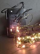 RTGS Micro LED 60 String Lights