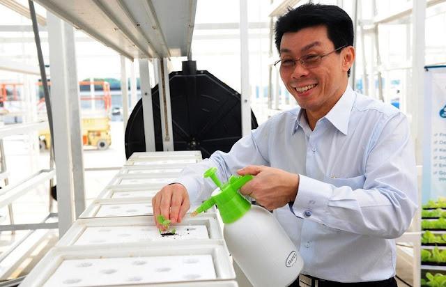 Granjas Verticales en Singapur