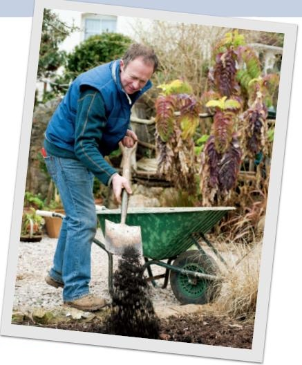 Soil improving garden tips english garden for Soil improver