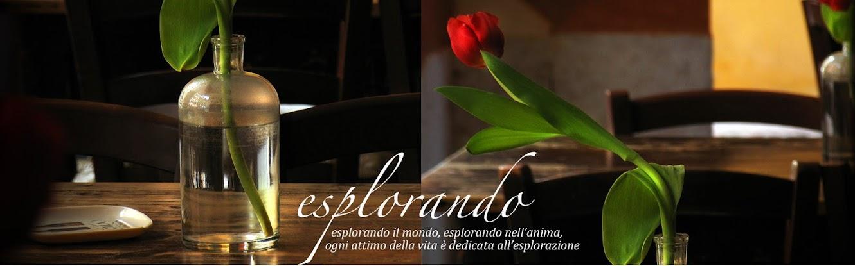 ESPLORANDO Verona e dintorni, arte e natura