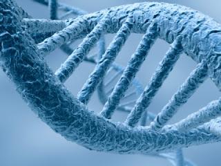 Consiguen almacenar información en ADN sintético